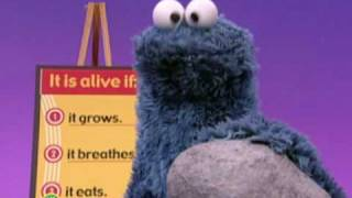 Sesame Street: Who's Alive?
