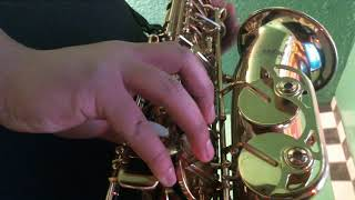 Rockin Around The Christmas Tree Alto Saxophone Cover
