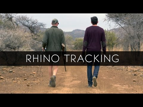 Rhino Tracking in Letsatsing