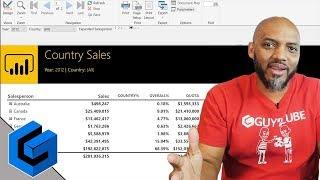 Power BI Paginated Reports: Visualizing Data