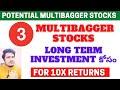 Multibagger Stocks 2021 | Best 3 Multibagger Stocks For Long Term | #PotentialMultibaggerStocks2021