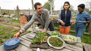 Cooking on Martha's Vineyard with chef Chris Fischer