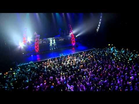 Hologram Concert - Butterfly on Your Right Shoulder Live