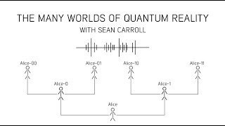 The many worlds of quantum reality with Sean Carroll