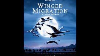 «Птицы» — документальный фильм Жака Перрена
