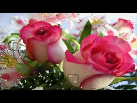video oreja van gogh mil rosa: