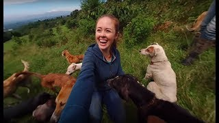 World's Largest Dog Park in 360