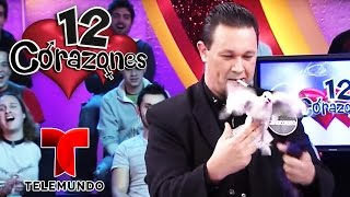 12 Hearts💕: Magicians Special! | Full Episode | Telemundo English
