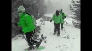 Vídeo de raquetas de nieve