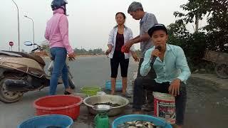 Bất ngờ với anh bán cá đường phố gây cay đắng người xem - Hài ca nhạc độc lạ Nguyễn Vịnh