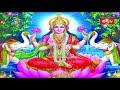 భారతీయ సంస్కృతి విశిష్టత | Lakshmi Kataksham | Sri Samavedam Shanmukha Sarma | Bhakthi TV  - 02:59 min - News - Video