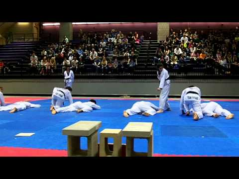 Spectacular Team YH Park Demo-2014 Manhattan Open
