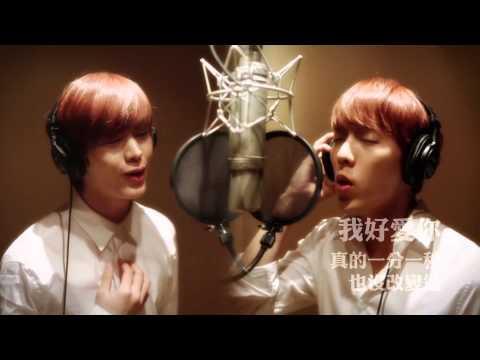[繁中字幕]旼赫+星材(BTOB) - 人偶 (李志勛,申彗星) Cover