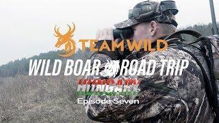 Wild Boar Hunting: Stalking Wild Boar, Fallow Doe and Mouflon Rams in Hungary