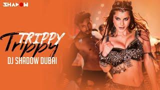 Trippy Trippy Remix – Sunny Leone Ft Badshah