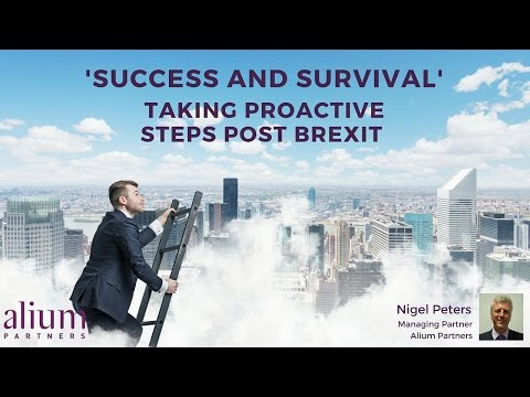 Post-Brexit Business Planning - Maximise the Moment