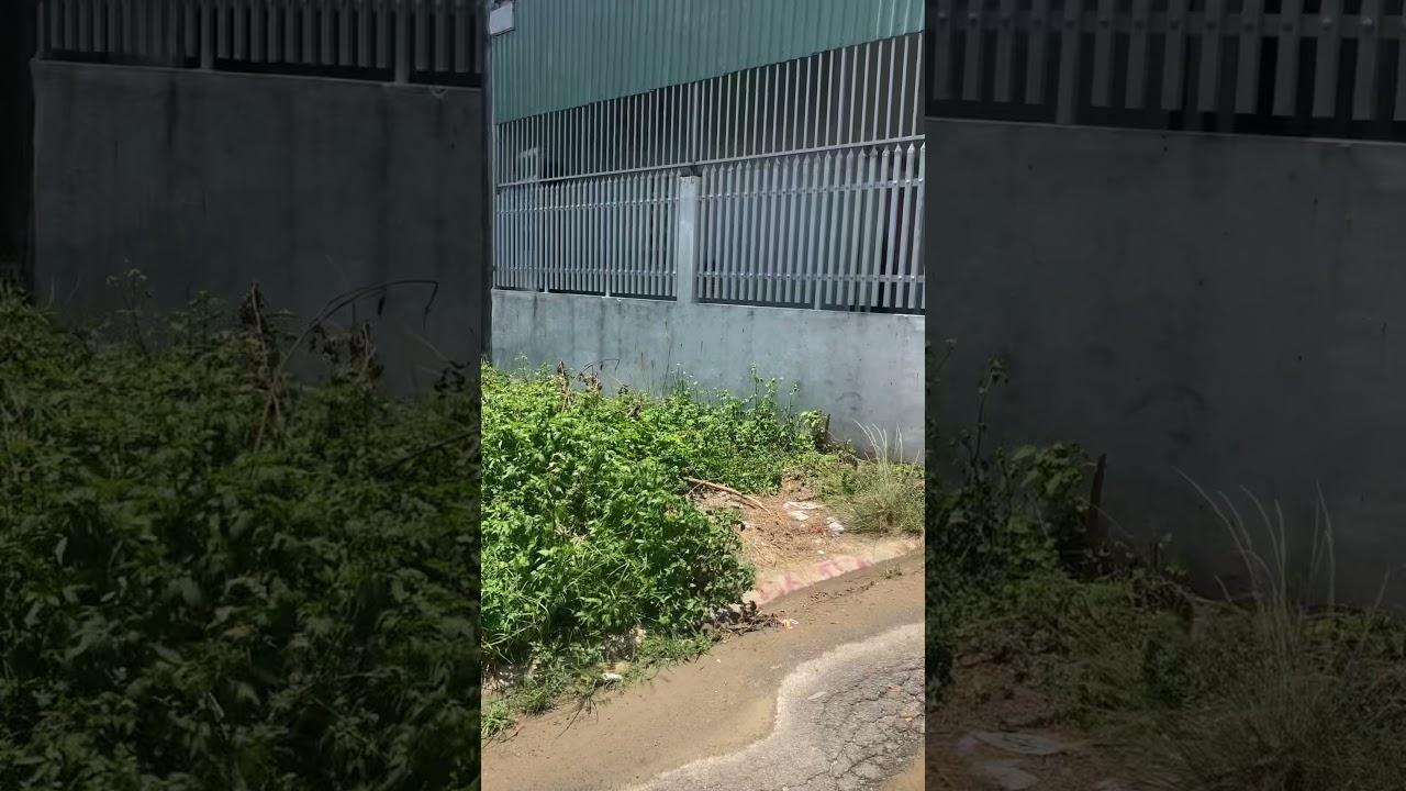 Bán đất 118m giá đầu tư tại Thành Phố Sân Bay Long Thành video