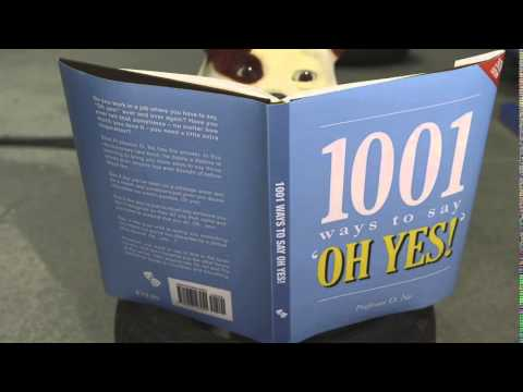 Churchill: 1,001 Ways To Say 'Oh Yes!'