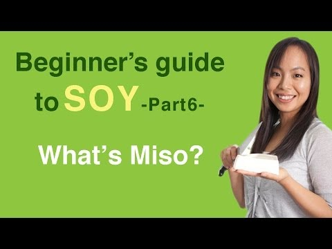 Beginner's guide to soy 6- What is miso?