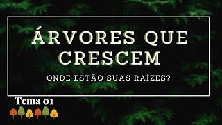 08/03/20 - Árvores que Crescem - Tema 01 - Onde estão suas raízes? - Rosana Fonseca