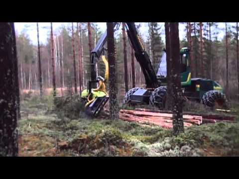AFM 50 Corona harvesting head - Logman Softwoods