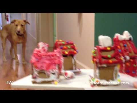 Biscardi Creative Media: #WallyCam  Molly Judges the Gingerbread House Contest!