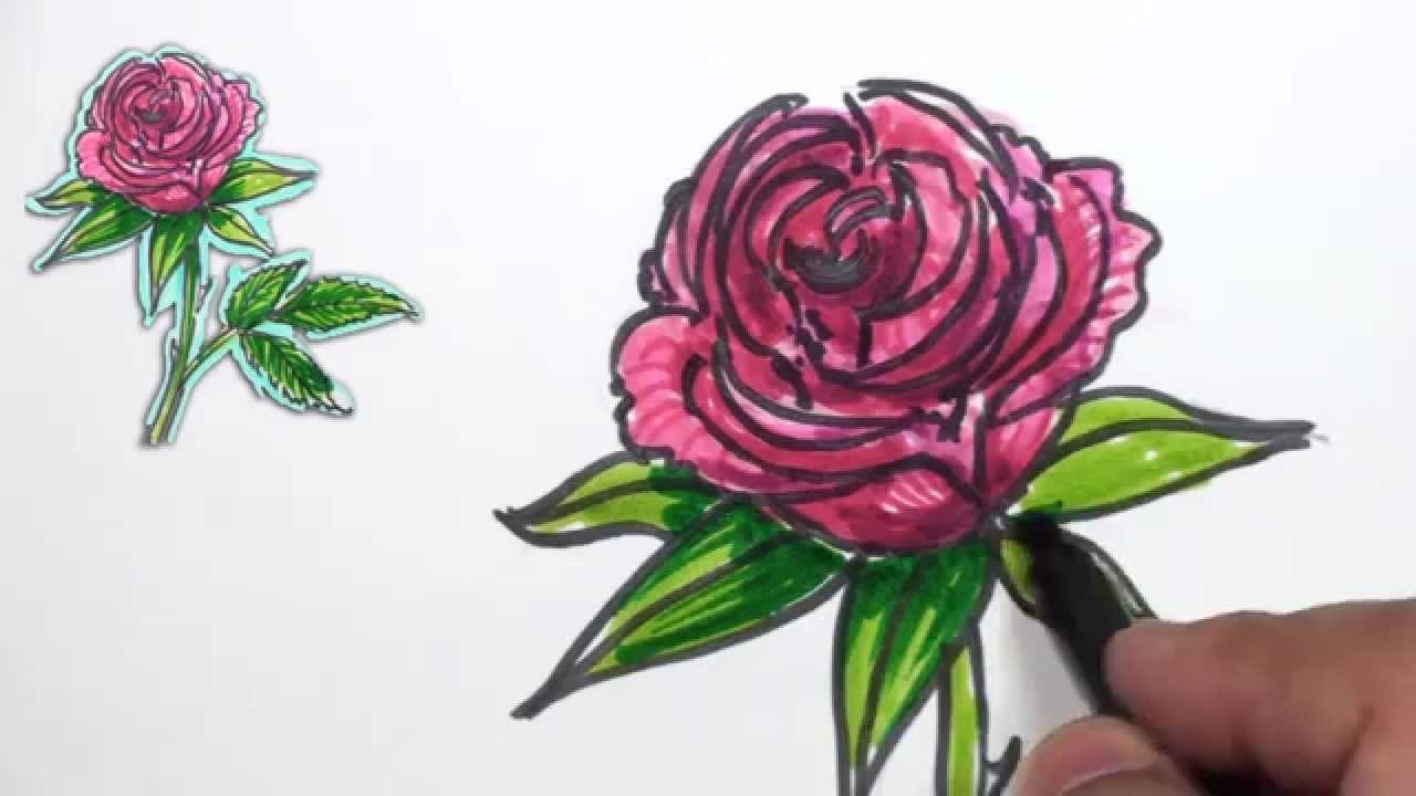 How to Draw a Rose - Simple Red Rose Drawing Lesson | MAT ...