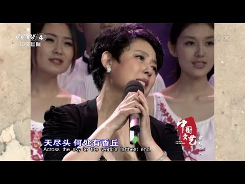 葬花吟 - 陈力 (中国文艺 20150807) Song of Burial of Flowers - Chen Li
