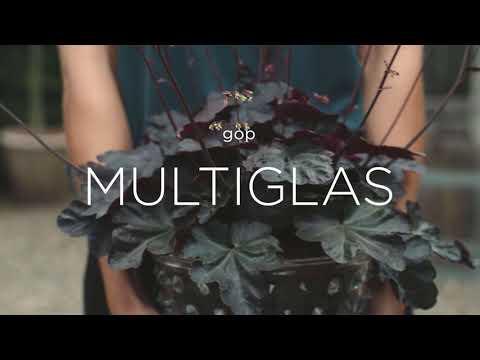 gop Multiglas Inspirasjon - Norsk