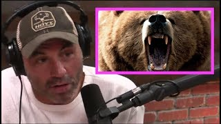Joe Rogan STUNNED By Bear Attack Story