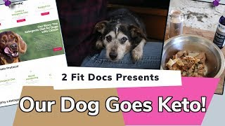 How We Turned our Dog Keto
