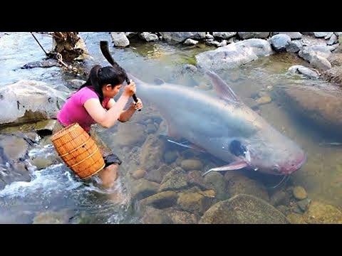 7 Monstruos Mortales y Asesinos Del Rio Amazonas 😨