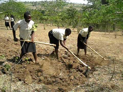 Hope Academy Students Digging