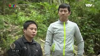 Tòa xử án - Cuồng sát - Luật sư giỏi ở Hà Nội - Luật sư giỏi ớ HCM
