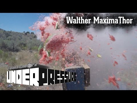 Walther MaximaThor Review