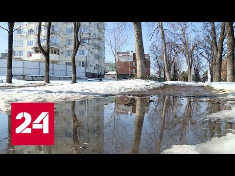 Татьянин день в Москве стал самым теплым за всю историю метеонаблюдений. Погода 24