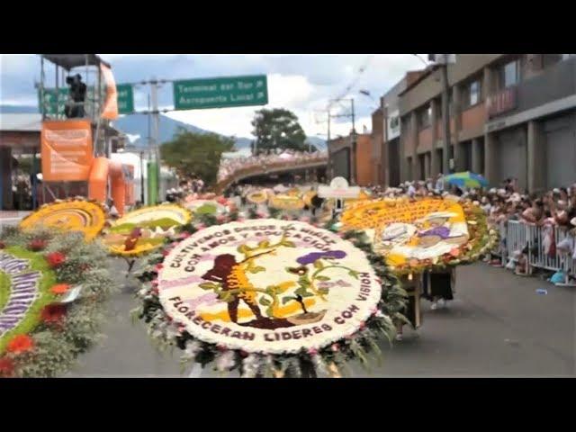 哥倫比亞鮮花節百花爭艷
