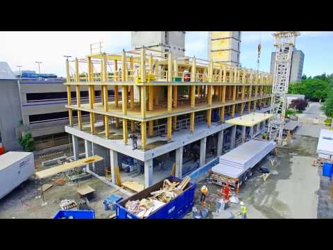 Innovation in Mass Timber Construction
