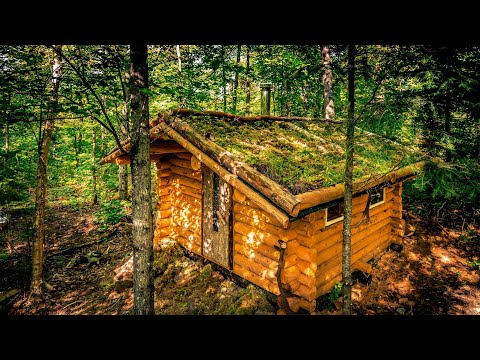 Off Grid Sauna in the Forest | Living Roof and Log Cabin Walls | 4K