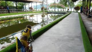 xiếc khỉ đua mô tô