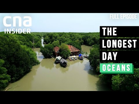 Sink Or Swim? Asia's Sinking Villages Engulfed By Rising Seas | The Longest Day | Climate Change