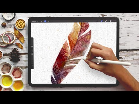 Paint a Watercolor Feather in Procreate