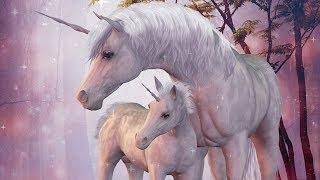 Relaxing Kids Story for Sleep ~ Your Secret Unicorn Land | Guided Meditation for Children