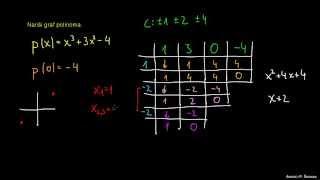 Graf polinoma 5