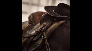 Mr Wild West - Relaxing Country Music
