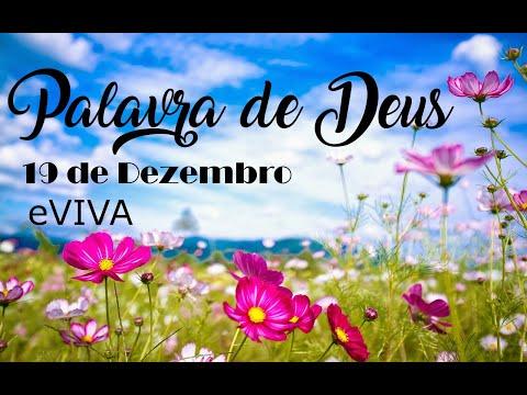 PALAVRA DE DEUS PARA HOJE 19 DE DEZEMBRO eVIVA MENSAGEM MOTIVACIONAL PARA REFLEXÃO DE VIDA