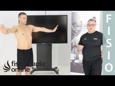 Primer ejercicio ortoestático programa base, etapa 5 y 6. Marcel Caufriez Método hipopresivo