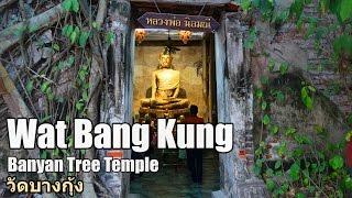 Wat Bang Kung Banyan Tree Temple