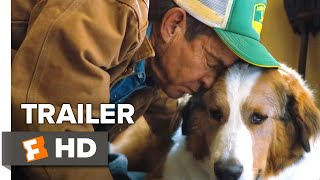 A Dogs Journey 2019 Movie Trailer
