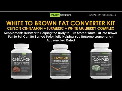 White to Brown Fat Supplements Converter Kit for Acceleration of Weight Loss